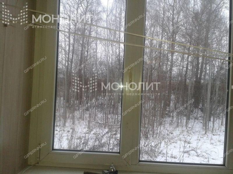 двухкомнатная квартира на улице Пушкина дом 20 город Нижний Новгород