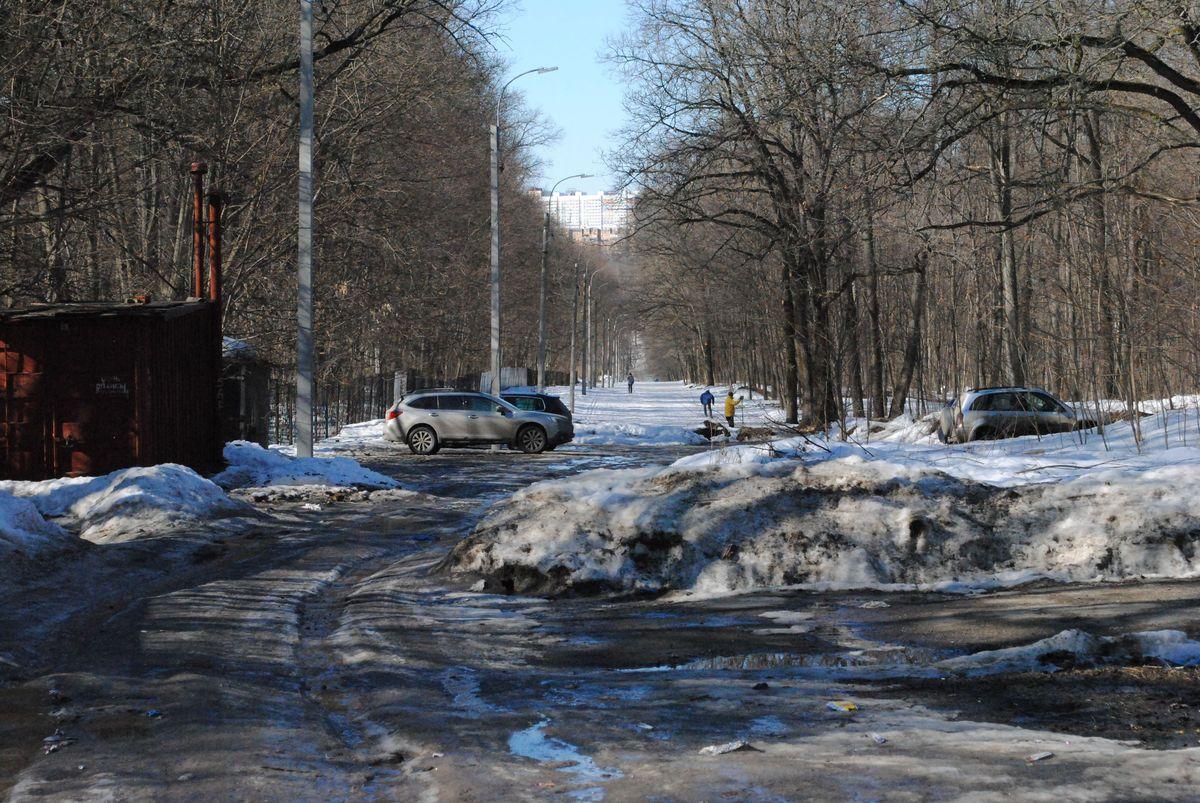 Какие парки и скверы благоустроят в 2018 году в Нижнем Новгороде? - фото 21