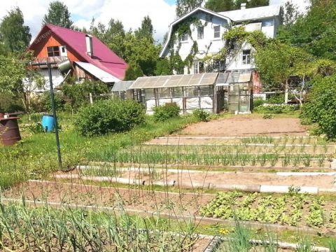 dom-poselok-strigino-ul-derzhavina фото